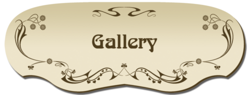 24-Gallery