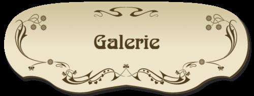 D5-Gallery